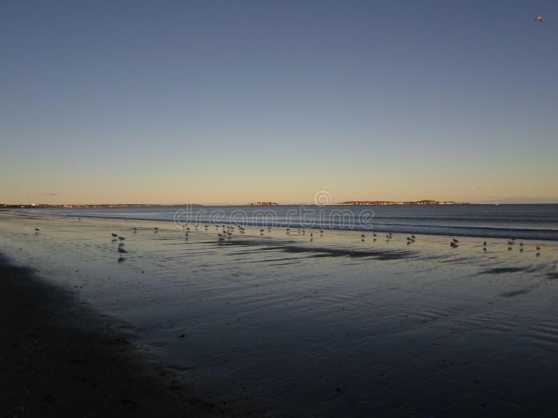 Revere пляж, Revere, Массачусетс, США стоковое фото