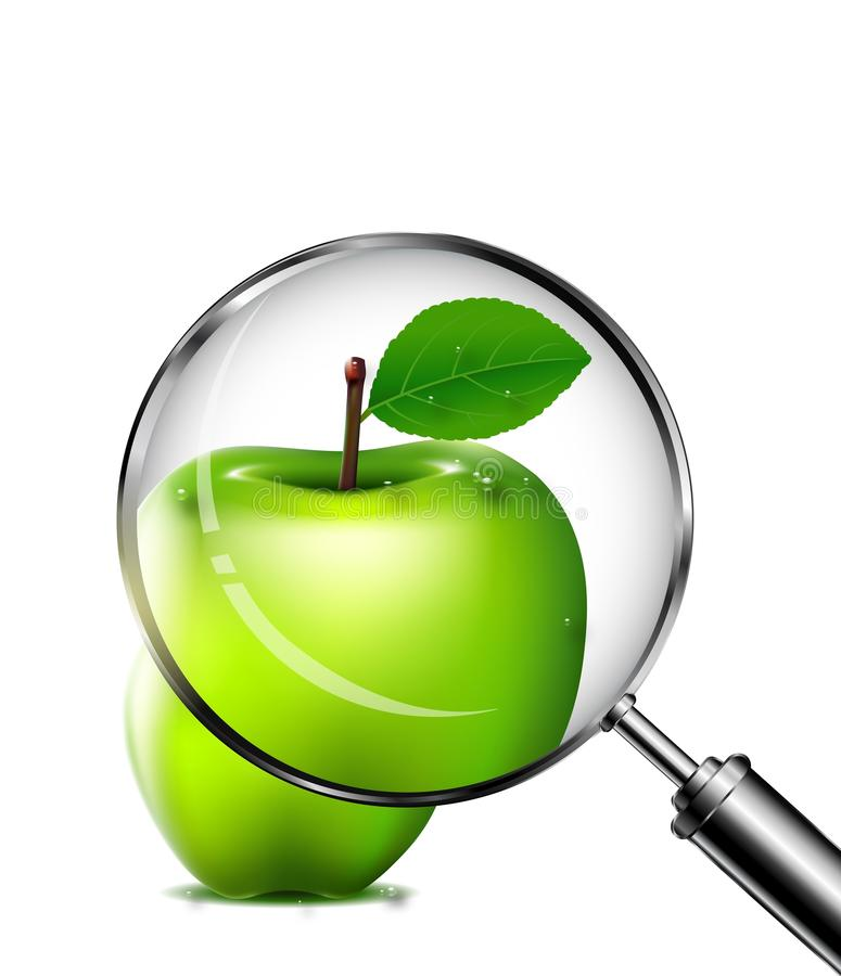 Reviewing an green apple with a magnifying glass stock illustration