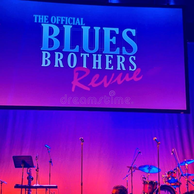 A revisão dos irmãos dos azuis fotografia de stock royalty free