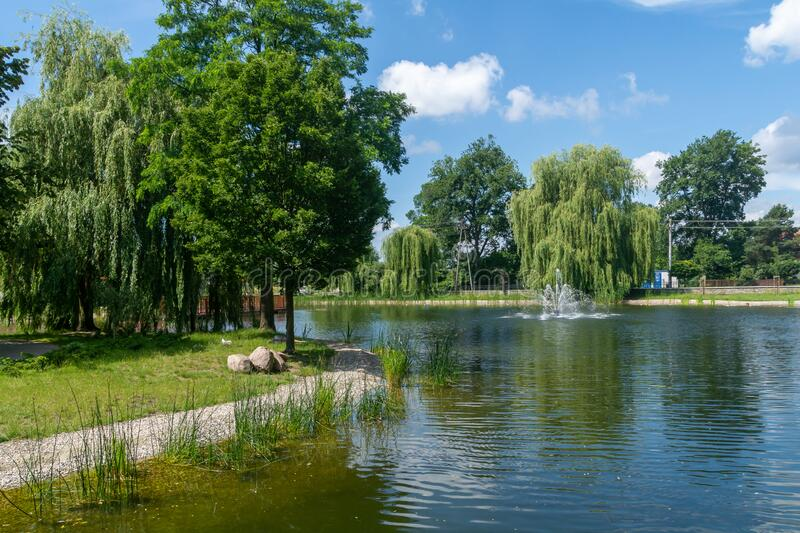 City park in the city of Zdunska Wola, Poland. A revitalized park from the 19th century in the city center royalty free stock photos