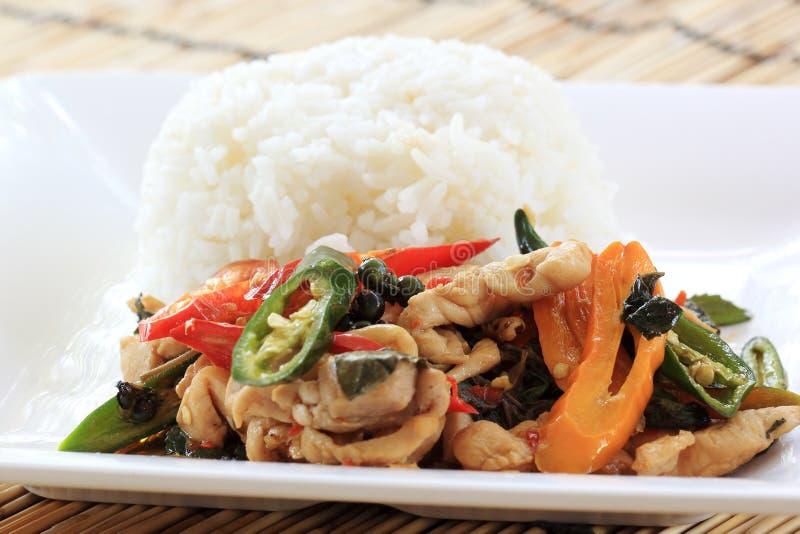 Revuelva a Fried Chicken con la albahaca santa y el arroz cocido al vapor (Krapao Gai) foto de archivo