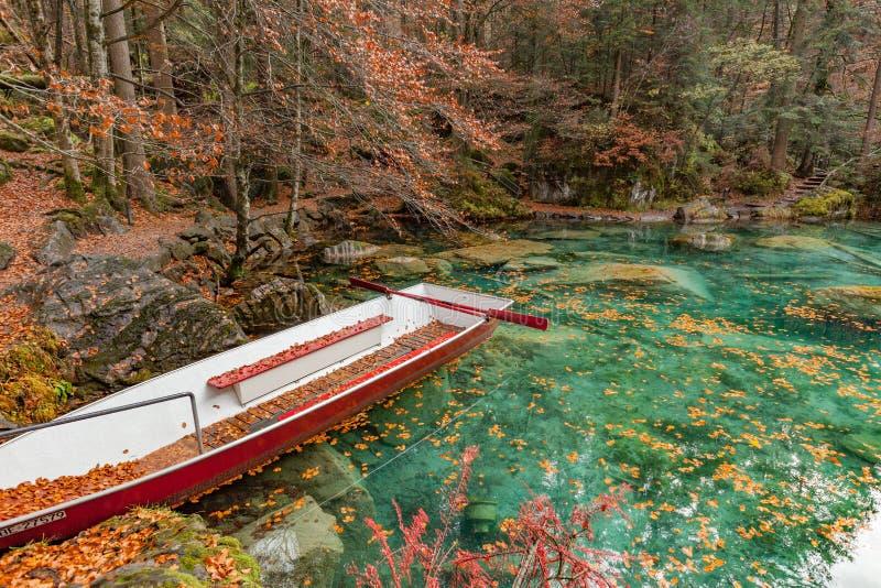 Rewolucjonistka liście i czerwona łódź przy Blausee/natury Błękitnym Jeziornym parkiem, Kande obrazy royalty free