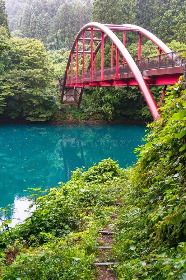 Rewolucjonistka most nad rzeką w lesie fotografia royalty free