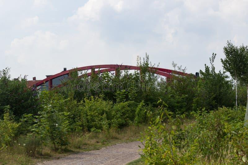 Rewolucjonistka most za krzakami obraz stock