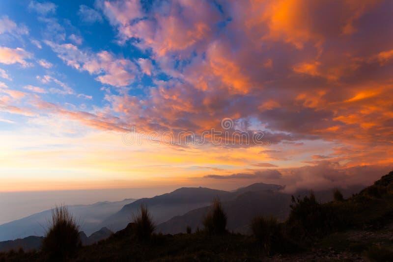 Rewolucjonistka, pomarańcze, żółte chmury z niebieskim niebem, obrazy stock