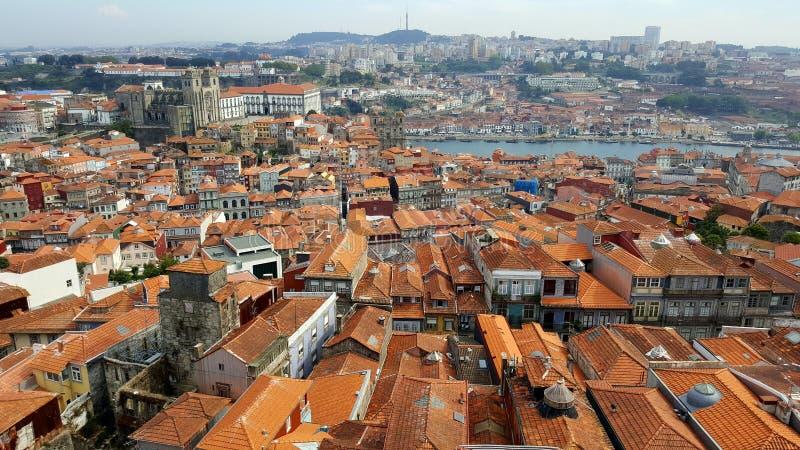 Rewolucjonistka zadasza Porto obraz stock