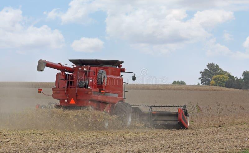 Rewolucjonistki gospodarstwa rolnego syndykat zdjęcie royalty free