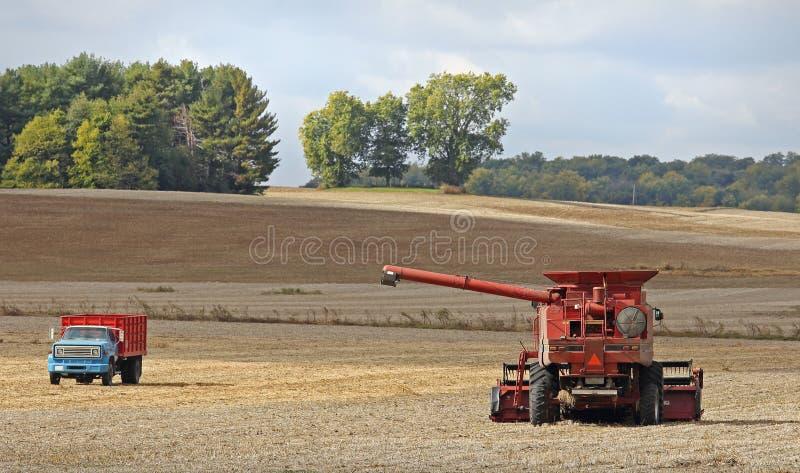 Rewolucjonistki gospodarstwa rolnego syndykat zdjęcia royalty free
