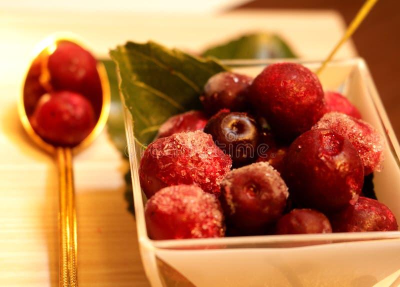 Rewolucjonistki marznąć jagody na liściach obraz stock