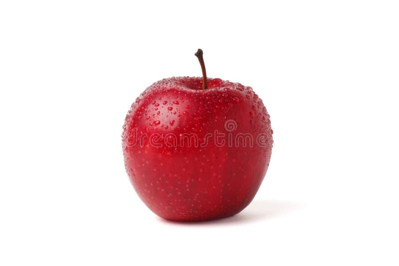 Rewolucjonistki mokry jabłko z wodą opuszcza na białym tle zdjęcia royalty free