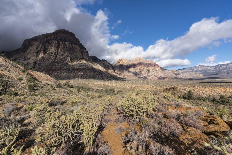 Rewolucjonistki Nevada Listopad Rockowa burza fotografia royalty free