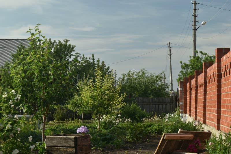 Rewolucjonistki ogrodzenie w ogródzie obraz royalty free