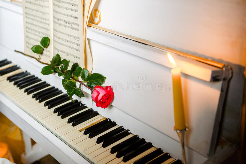 Rewolucjonistki róża na pianino kluczach i muzycznej książce fotografia stock