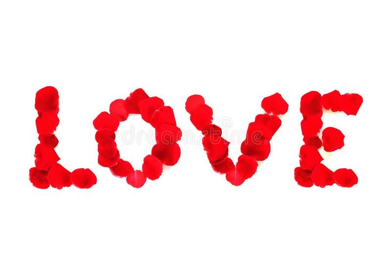 Rewolucjonistki róży płatki ustawiający w słowie miłość, pojęcie valentine ` s dzień zdjęcia royalty free