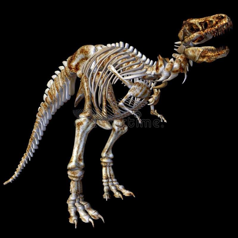 rex σκελετός τ διανυσματική απεικόνιση