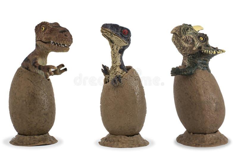 Rex тиранозавра младенца, велоцираптор младенца и трицератопс младенца изолированные на белой предпосылке стоковые фотографии rf