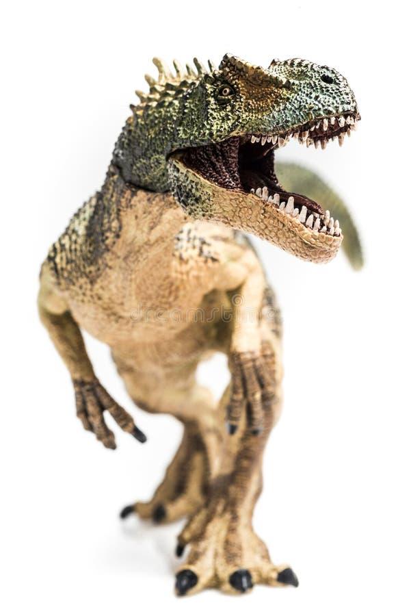 Rex de T images libres de droits