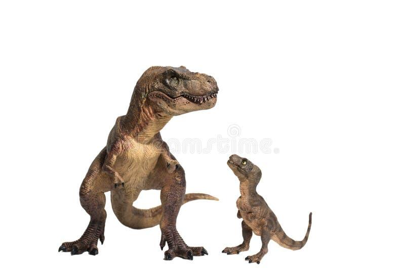 Rex de tyrannosaure avec le t-rex de bébé sur le fond blanc photos libres de droits