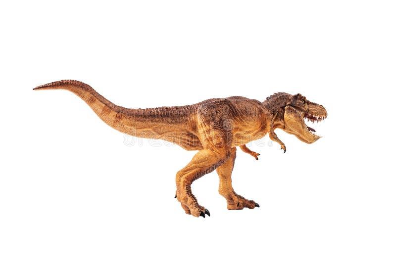Rex de tyrannosaure, dinosaure sur le fond blanc images stock