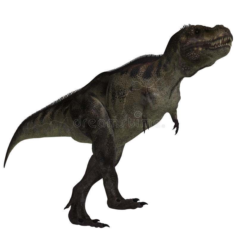 Rex de Tyrannosaurus illustration de vecteur