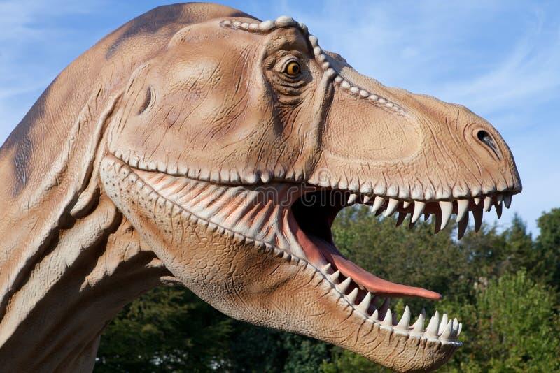 Rex de tyrannosaurus de dinosaur de reptile photos stock