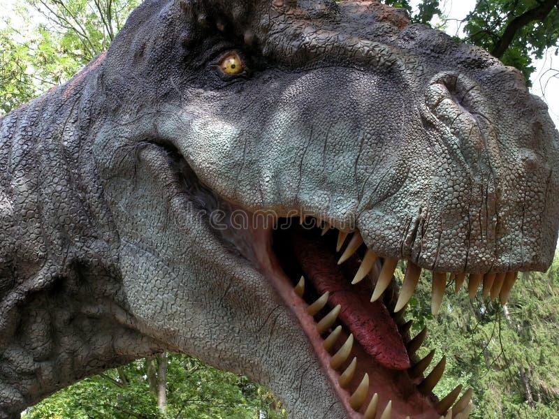 Rex de Tyrranosaurus foto de archivo libre de regalías