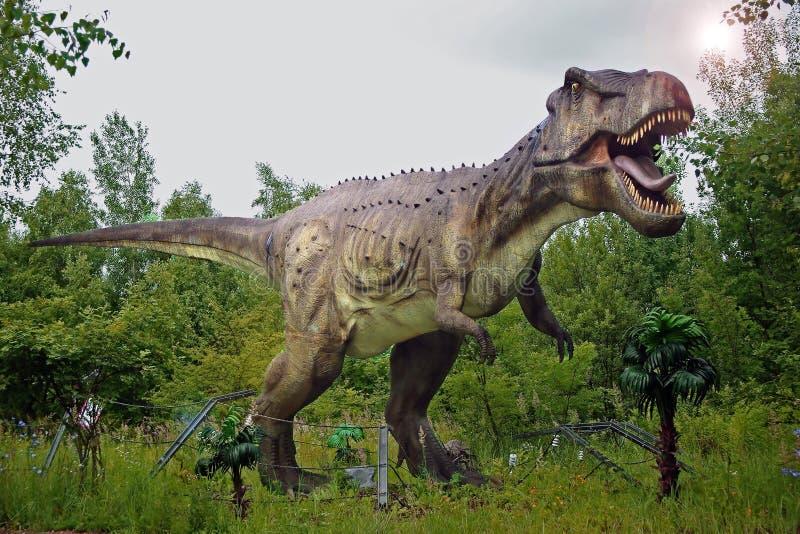 Rex del tiranosaurio fotografía de archivo libre de regalías