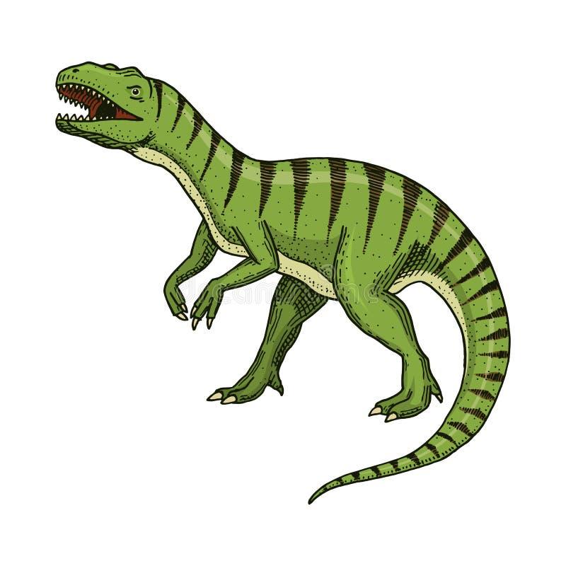 Rex del tiranosaurio de los dinosaurios, Afrovenator, Megalosaurus, Tarbosaurus, esqueletos de Struthiomimus, fósiles prehistóric stock de ilustración