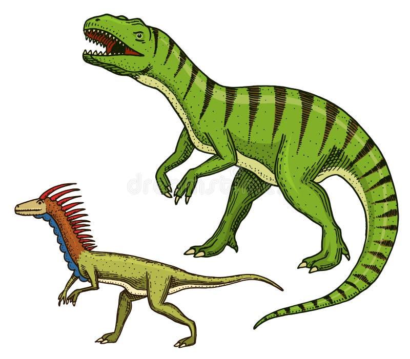 Rex del tiranosaurio de los dinosaurios, Velociraptor, Ceratosaurus, Afrovenator, Megalosaurus, Tarbosaurus, esqueletos de Struth libre illustration