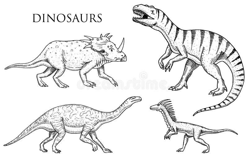 Rex del tiranosaurio de los dinosaurios, Velociraptor, Ceratosaurus, Afrovenator, Megalosaurus, Tarbosaurus, esqueletos de Struth stock de ilustración