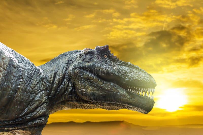 Rex del tiranosaurio en puesta del sol fotos de archivo libres de regalías