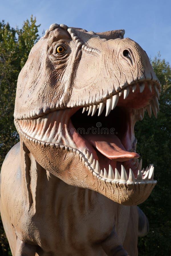 Rex do tyrannosaurus do dinossauro do réptil fotos de stock royalty free
