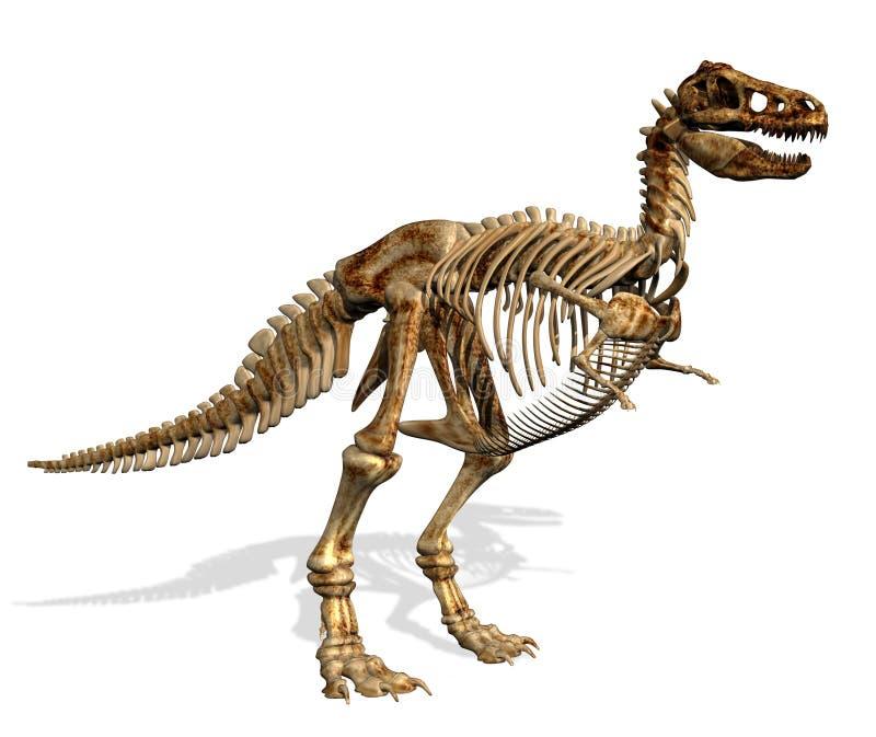 rexskeletttyrannosaurus vektor illustrationer