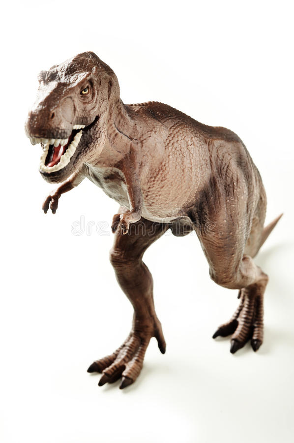 rextyrannosaurus royaltyfri foto