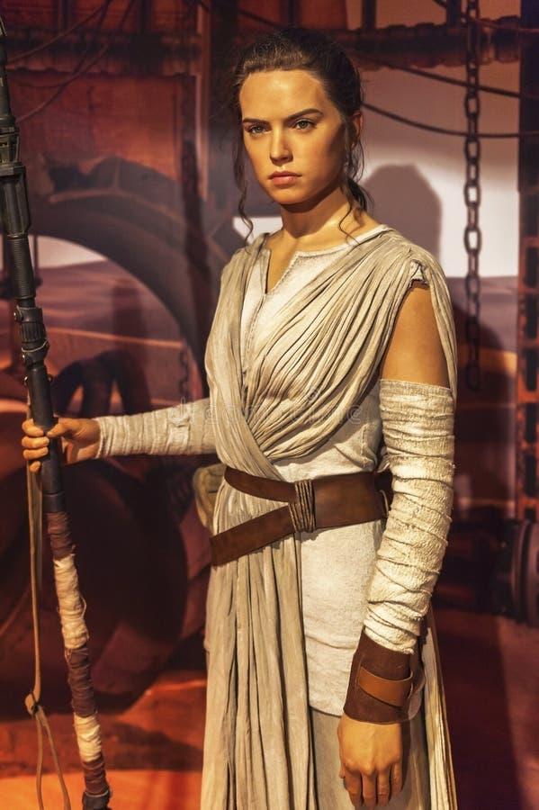 Rey蜡象 免版税库存图片