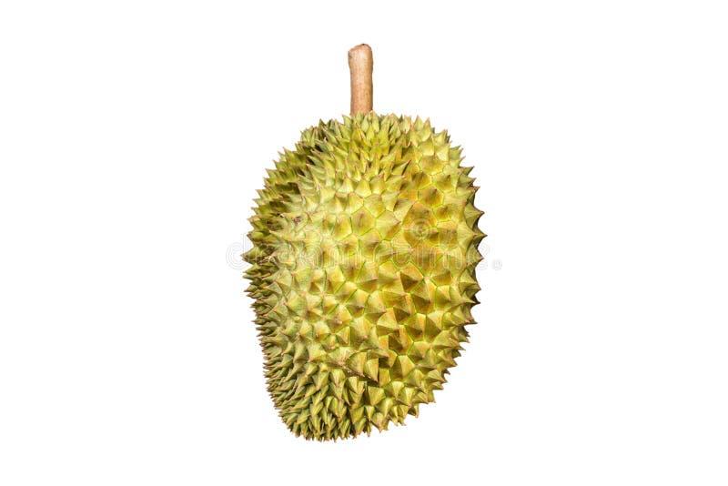 Download Rey del Durian de frutas foto de archivo. Imagen de postre - 41903086