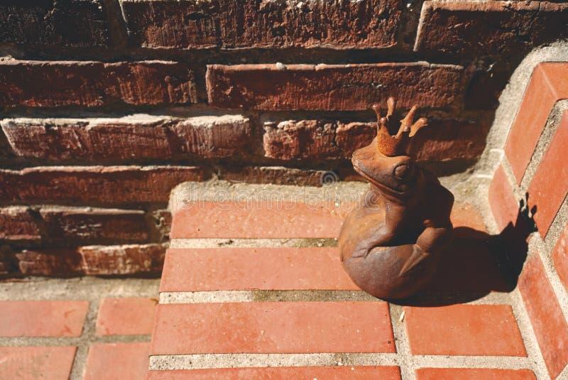 Rey oxidado de la rana imagen de archivo