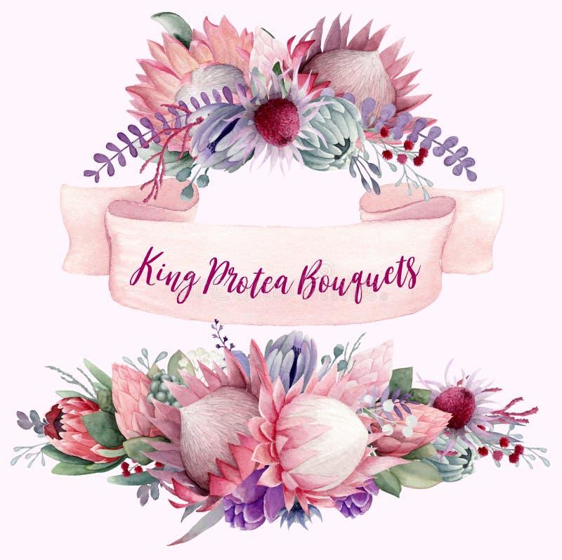 Rey Protea Bouquets Vol 1 imágenes de archivo libres de regalías
