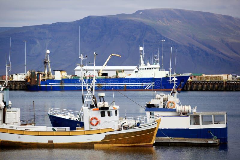 Reykjavik hamn royaltyfria foton