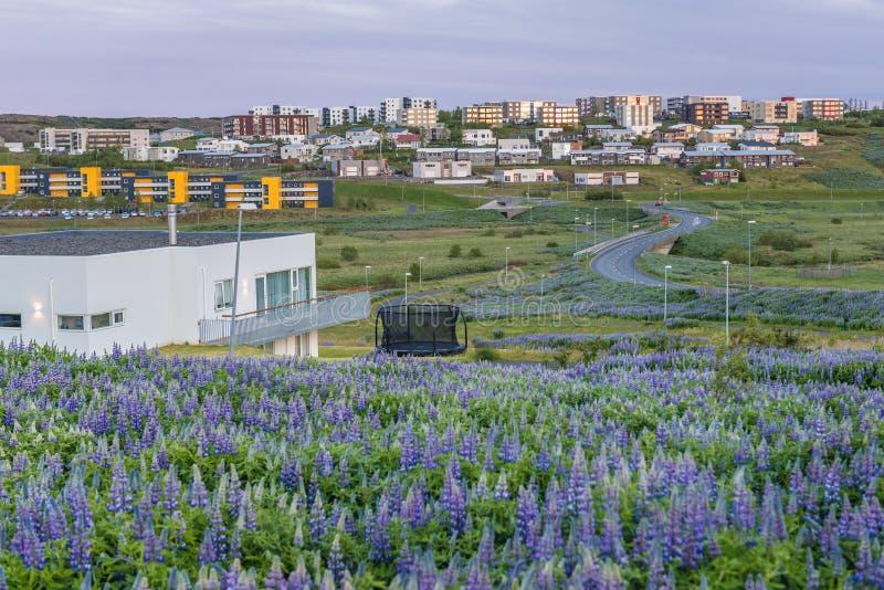 Reykjavik in Islanda immagine stock