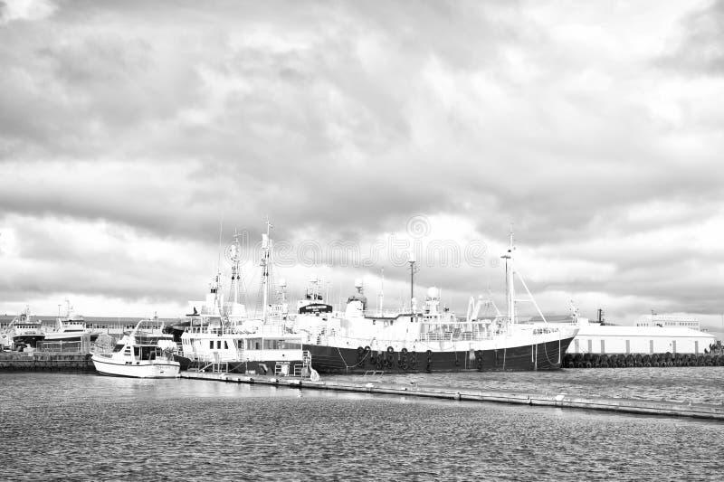 Reykjavik, Islanda - 13 ottobre 2017: porto marittimo con le navi Viaggi dalle isole di Marettimo Egadi della destinazione della  immagini stock libere da diritti