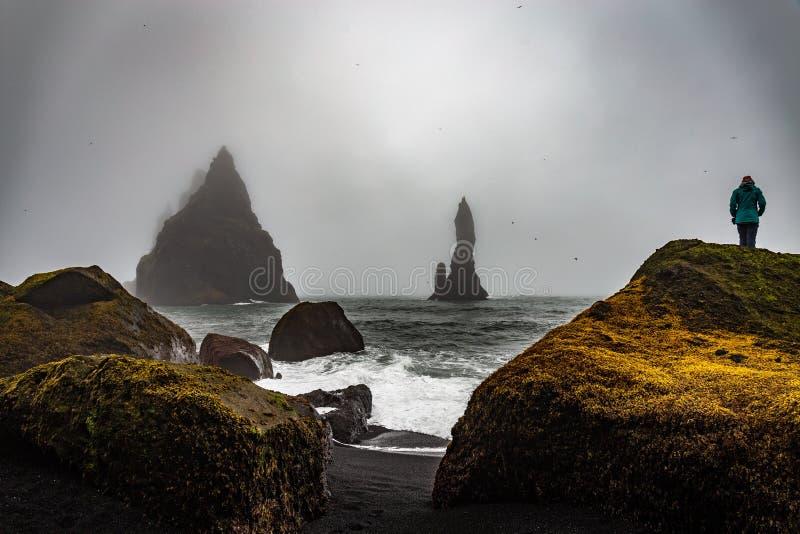 Reynissfjara在冰岛 免版税库存照片
