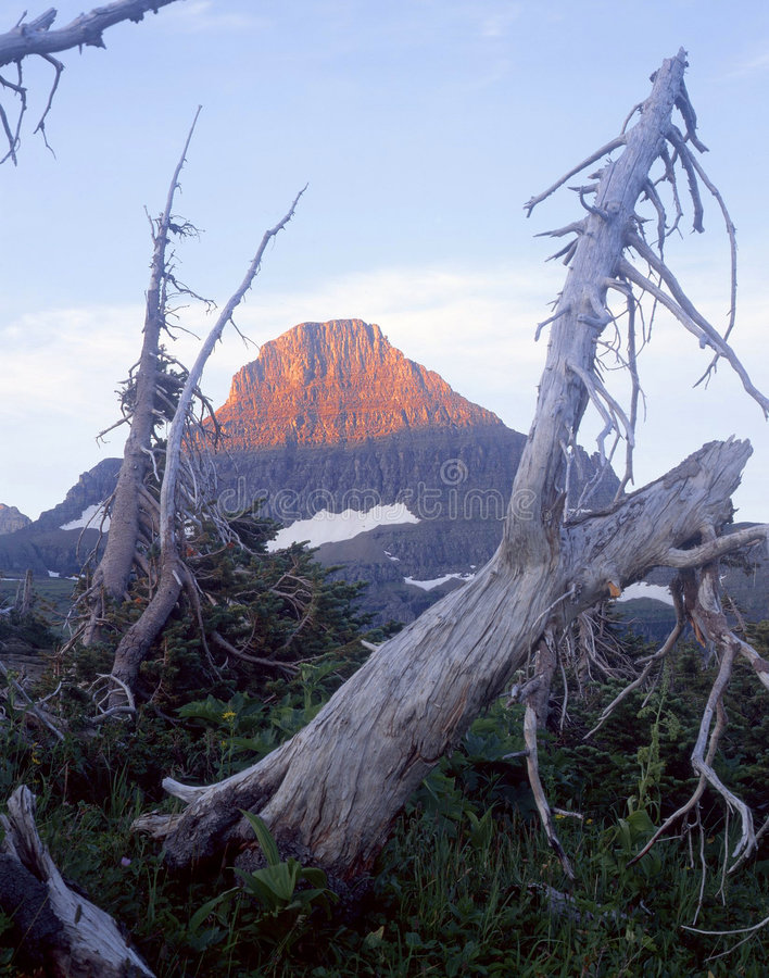 Download Reynolds Mountain Stock Photo - Image: 708990