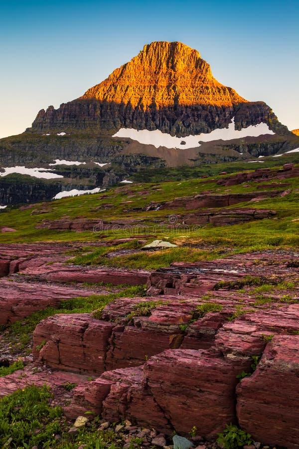 Reynolds Mountain na área de Logan Pass do parque nacional de geleira, Montana imagem de stock royalty free
