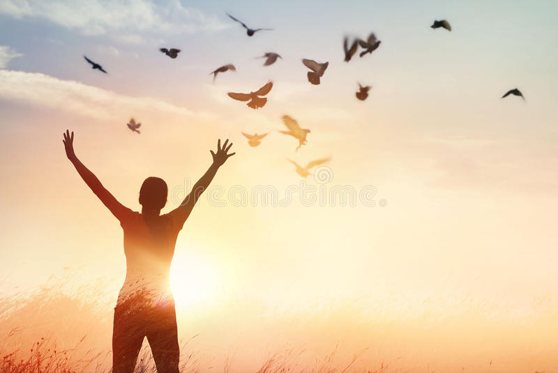 Rezar da mulher e pássaro livre que apreciam a natureza no fundo do por do sol imagens de stock royalty free