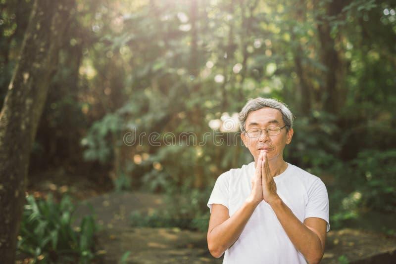 Rezar do homem asiático superior no parque natural imagem de stock royalty free