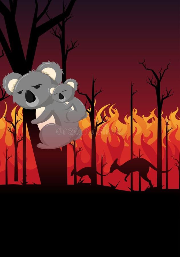 Reze pela Austrália assustou koala com um bebê koala tentando escapar dos incêndios florestais ilustração royalty free