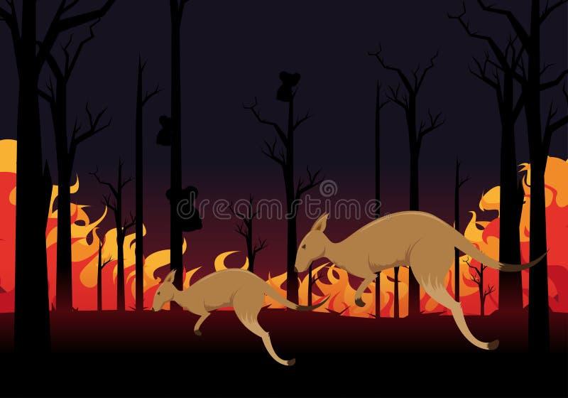 Reze pela Austrália canguru assustado com um canguru bebê tentando escapar das queimadas ilustração stock