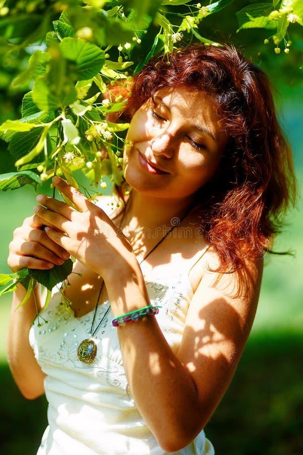 Rezo apacible a un árbol de tilo hermoso en día de pleno verano brillante imagenes de archivo