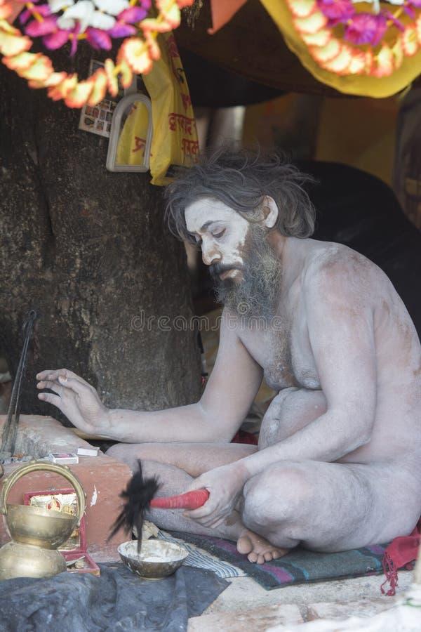 Rezos de ofrecimiento de Sadhu del Naga en Kumbh Mela Trambakeshwar, nasik, maharashtra, la India fotografía de archivo libre de regalías